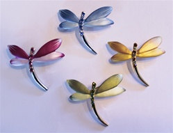 Butterfly And Dragonfly Pins